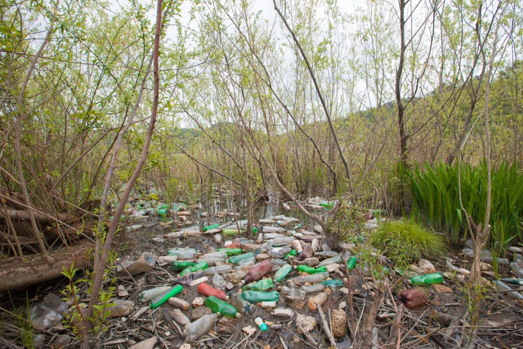 plastic waste on rioni river bank kutaisi