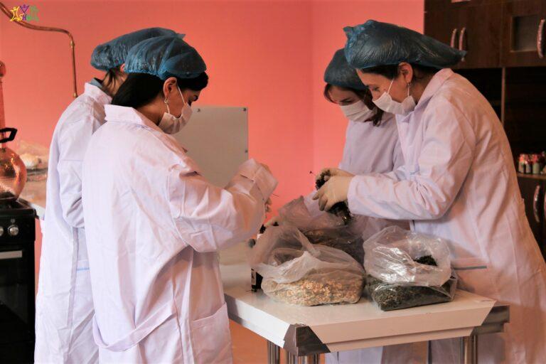spitak manushak women during the work process 0